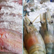 "<b>""Aroy Seafood Market Buffet"" every Saturday at She...</b>"
