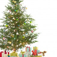 <b>CHRISTMAS & NEW YEAR GIFT INSPIRATION  AT THE ...</b>