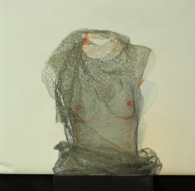 See-through-See-true-no.3-2013-Wirework-knitting-Digital-print-40-x-53-x-25-cm.jpg