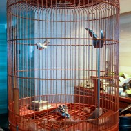 sculpture bird cage