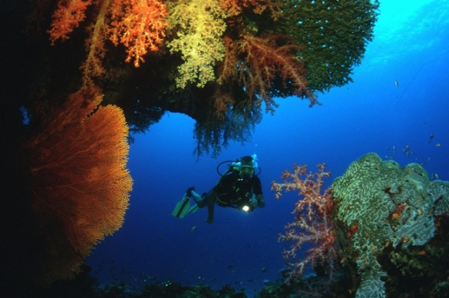 Diving-in-Sikao-3