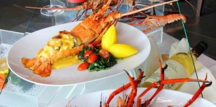 Crustacean Delights at Royal Orchid Sheraton