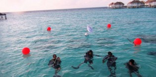 Coral growing programme at Centara Grand Island Resort Maldives