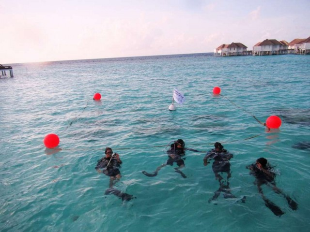 Centara-Grand-Island-Resort-Spa-Maldives-coral-farm-1