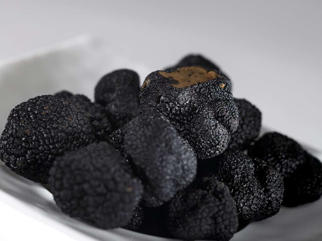 3-Black-Truffle-at-Hamiltons-Steak-House