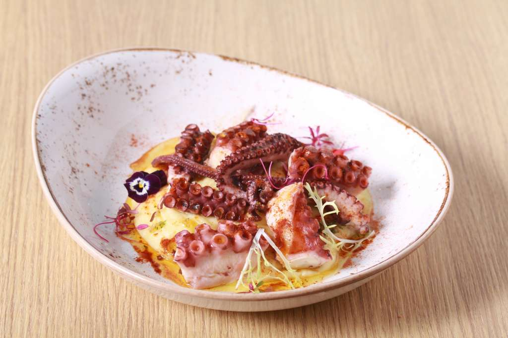 Octopus-galician-style-with-potato-puree-and-paprika