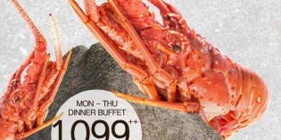 KANG ON THE ROCK WEEKDAY DINNER BUFFET AT NOVOTEL BANGKOK PLOENCHIT SUKHUMVIT