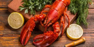 Lobster Festival at the Royal Orchid Sheraton Hotel & Towers
