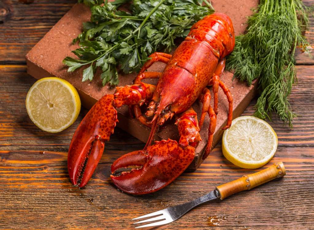 Lobster-Festival-at-Royal-Orchid-Sheraton-Hotel-Towers