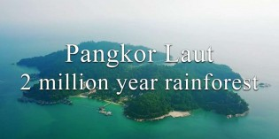 Pangkor Laut; private Island, 2 million year old rainforest, hornbills, fruit bat
