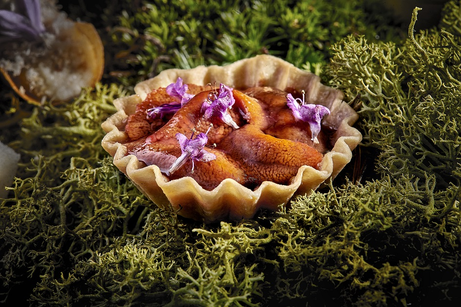 SEA-URCHIN-TART-WITH-BLACK-BEANS_resized