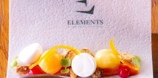 Elements Restaurant Launches New Tasting Menu