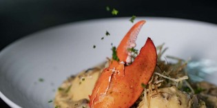 Delectable Sustainable Seafood Voyage at Giorgio's, Royal Orchid Sheraton Hotel & Towers